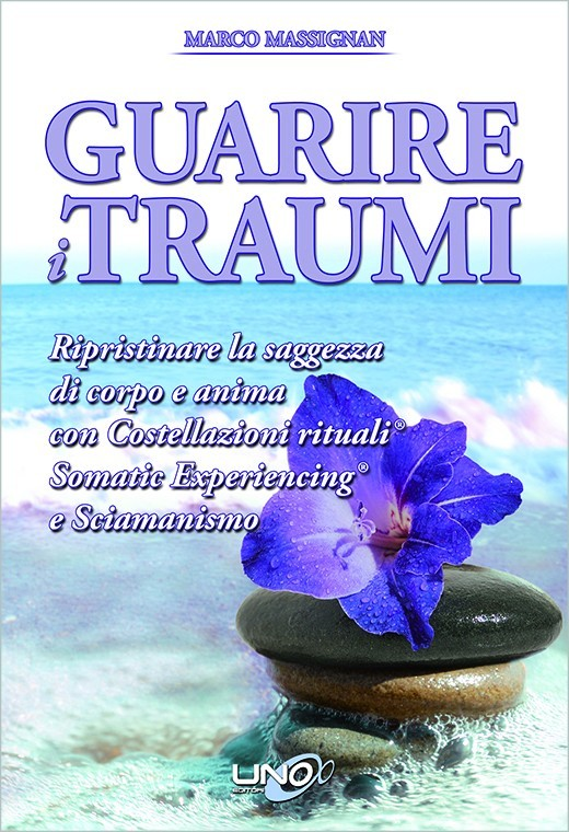 (eBook) Guarire i Traumi
